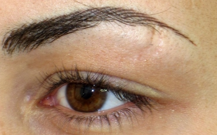 Thin Eyebrows Related Keywords - Thin Eyebrows Long Tail ...